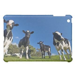 Cows feeding on pasture iPad mini case