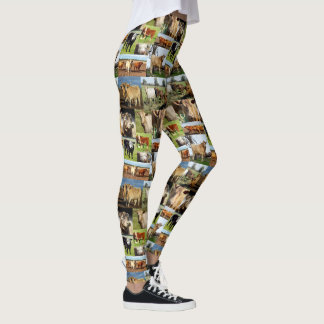 Cows In A Photo Collage, Leggings