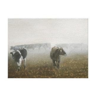 Cows in Corn Field Canvas Print