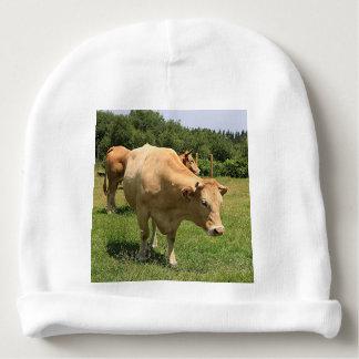 Cows in field, El Camino, Spain 2 Baby Beanie