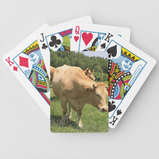 Cows in field, El Camino, Spain 2 Bicycle Playing Cards