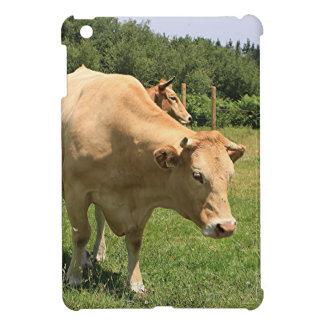 Cows in field, El Camino, Spain 2 Case For The iPad Mini