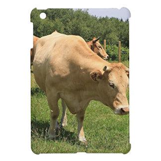 Cows in field, El Camino, Spain 2 Cover For The iPad Mini