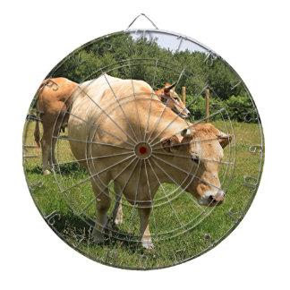 Cows in field, El Camino, Spain 2 Dartboard