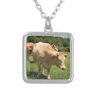 Cows in field, El Camino, Spain 2 Silver Plated Necklace