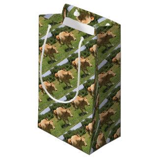 Cows in field, El Camino, Spain 2 Small Gift Bag
