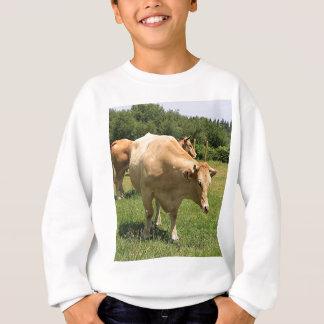 Cows in field, El Camino, Spain 2 Sweatshirt