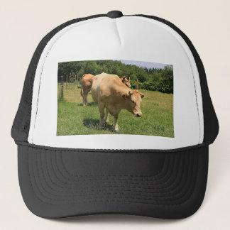 Cows in field, El Camino, Spain 2 Trucker Hat