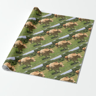 Cows in field, El Camino, Spain 2 Wrapping Paper