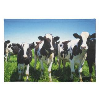 Cows in the field, Betsukai town, Hokkaido Placemat