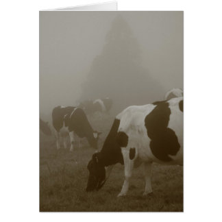 Cows in the mist greeting card