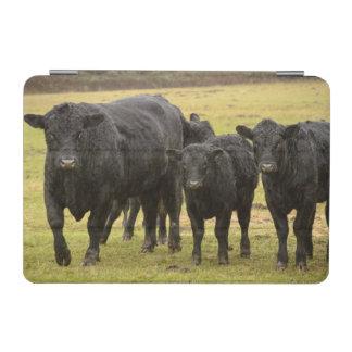 Cows in the rain iPad mini cover