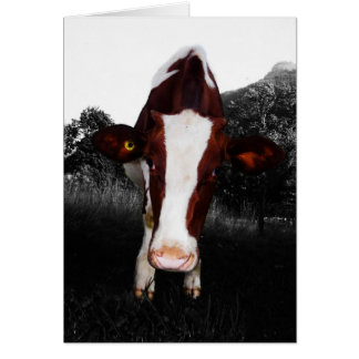 Cows - NOT Always Black and White Greeting Cards