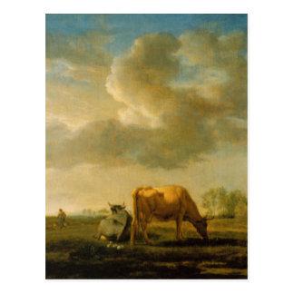 Cows on a Meadow by Adriaen van de Velde Postcard