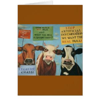 Cows On Strike Card