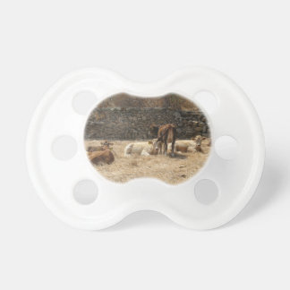 Cows Pacifier