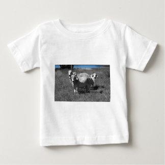 COWS QUEENSLAND AUSTRALIA BABY T-Shirt