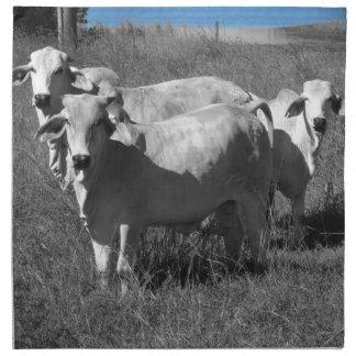 COWS QUEENSLAND AUSTRALIA CLOTH NAPKIN