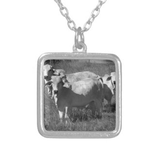 COWS QUEENSLAND AUSTRALIA SILVER PLATED NECKLACE