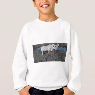 COWS QUEENSLAND AUSTRALIA WITH ART EFFECTS SWEATSHIRT