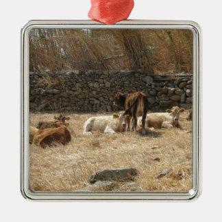 Cows Silver-Colored Square Ornament