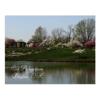 Cox Arboretum, Dayton, OH Postcard