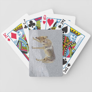 Coyote Bicycle Playing Cards