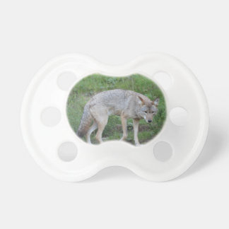 Coyote Collection Baby Pacifier