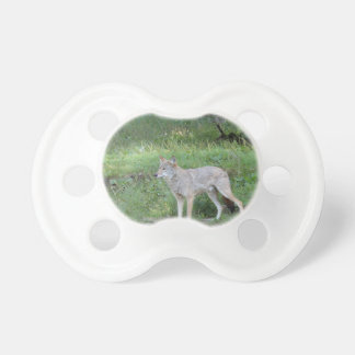 Coyote Collection Baby Pacifiers