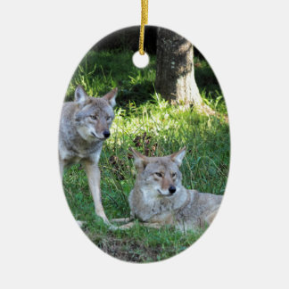 Coyote Collection Ceramic Oval Ornament