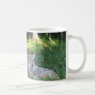 Coyote Collection Coffee Mug