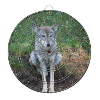 Coyote Collection Dartboard With Darts