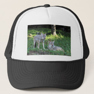 Coyote Collection Trucker Hat