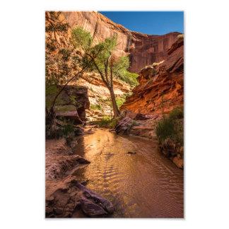 Coyote Gulch Sunset - Utah Photographic Print