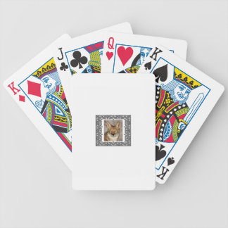 coyote in a frame bicycle playing cards