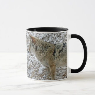 Coyote in a snowy field mug