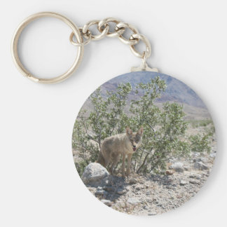 Coyote in Death Valley Desert Keychain