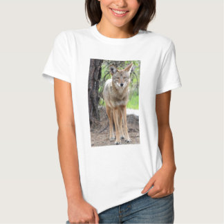 coyote in griffith park 003 shirts