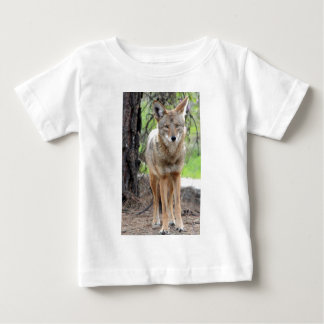 coyote in griffith park 003 tee shirt