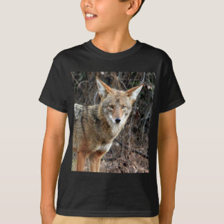 coyote in griffith park 005 t-shirts