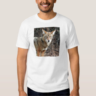 coyote in griffith park 005 tshirt