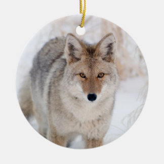 Coyote in Snow at Yellowstone National Park Ceramic Ornament