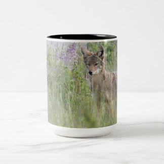 Coyote Large Mug