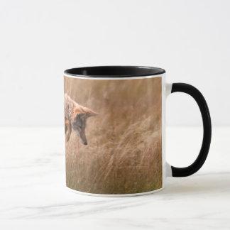 Coyote Leaping - Gibbon Meadows Mug