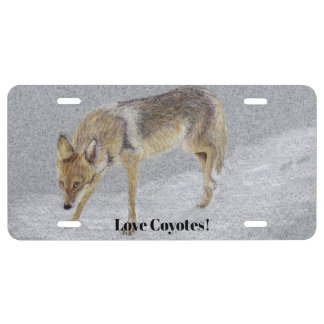 Coyote License Plate