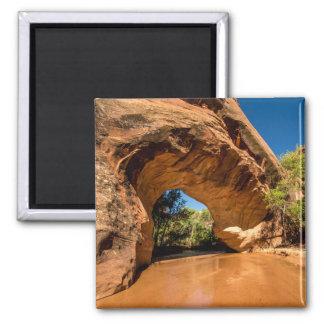 Coyote Natural Bridge - Coyote Gulch - Utah Magnet