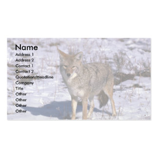 Coyote on snow business card template