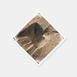 Coyote Paper Napkin