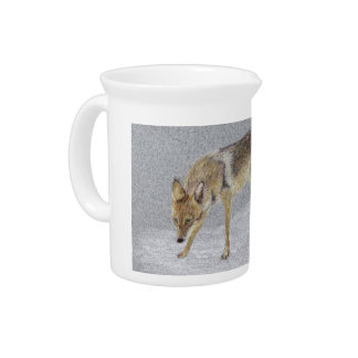Coyote Pitcher