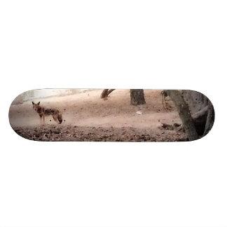 COYOTE Skateboard